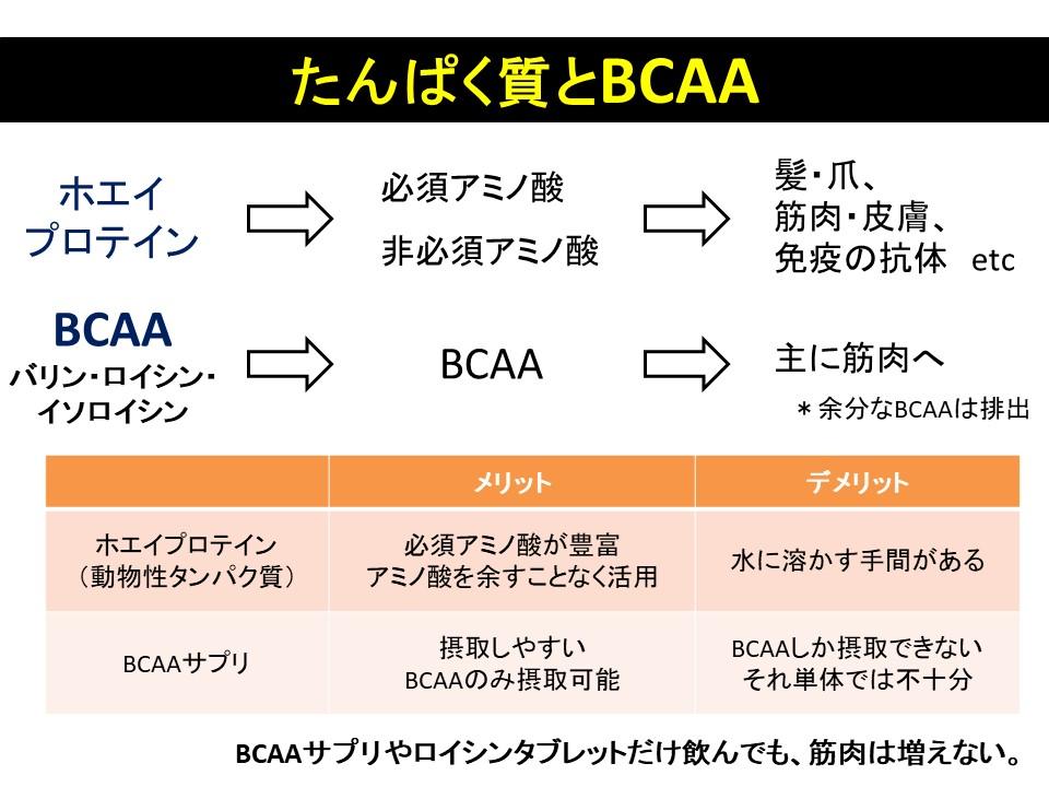 タンパク質とBCAA